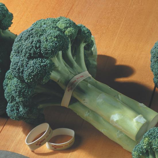 head of Dandy broccoli
