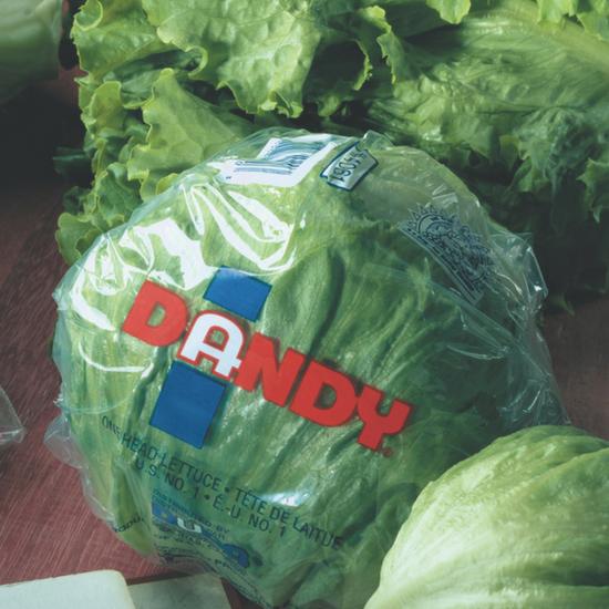 packaged iceberg lettuce