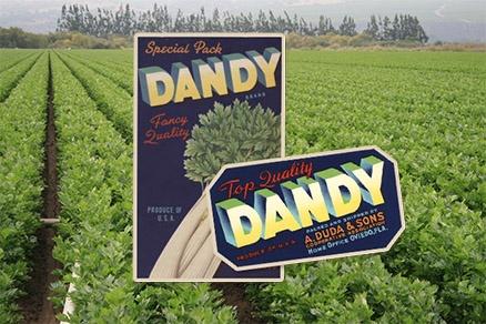 celery labeling