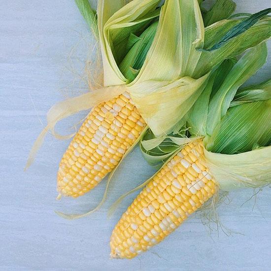 Dandy Sweet Corn