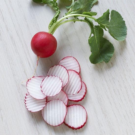 Dandy Radish Coins next to a full radish