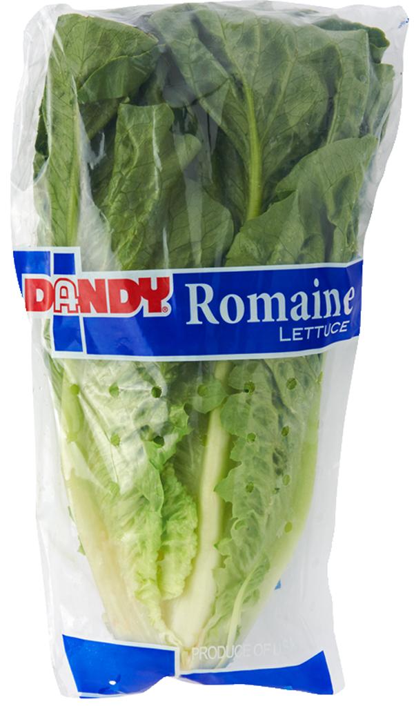 p-main-romaine